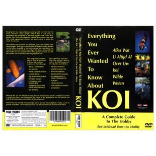 Everything you ever wanted to know about Koi