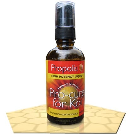 Propolis Pro Cure for Koi